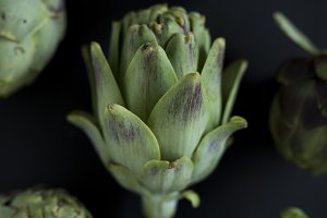 artichoke group