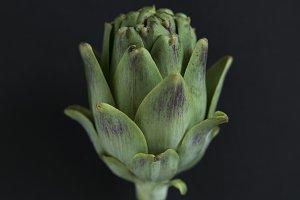 pretty artichoke