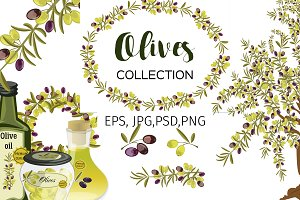 Olives collection vector clip art