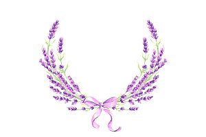 Lavender flowers decorative element.