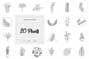 20 Plants illustration