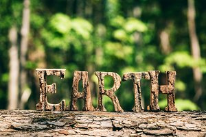 EARTH writing made from wooden lette