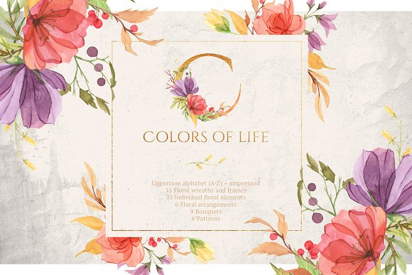 Watercolor gentle bright flowers
