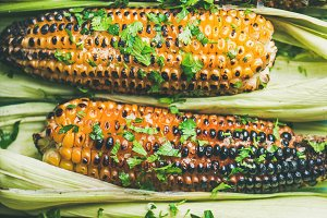 Flat-lay of grilled sweet corn with spices and herb, close-up