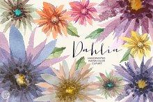Aquarelle dahlia flowers