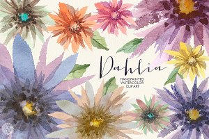 Aquarelle dahlia flowers