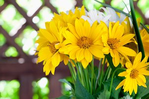 Summer bouquet of yellow flowers