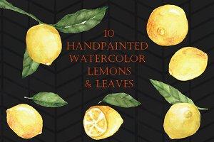 Hand painted Watercolor Lemons