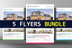 5 Real Estate Agent Flyers Bundle
