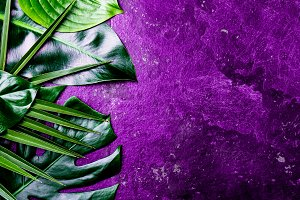 Creative tropical leaves background. Trandy tropical leaves on ultra violet slate background - color of the year 2018. Top view, copy space. Banner