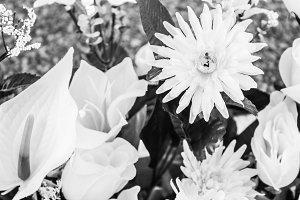 Bouquet Flowers Black White