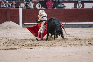 Man bullfighter dressed in bullfight