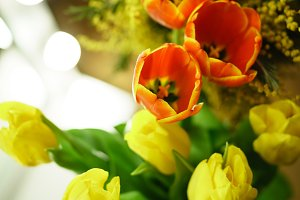 Flower bouquet. Red and yellow tulip
