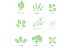 Vector eco, organic, bio logos or signs. Salad bar. Green salad leaves. Vegetarian food.