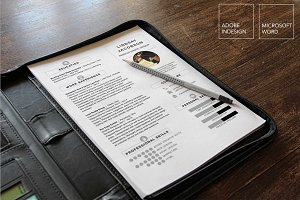 Designer Resume Template | 2 Piece