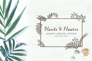 Plants & Flowers set. Pattern,wreath