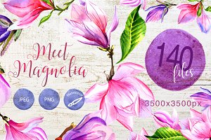 Meet magnolia PNG watercolor set