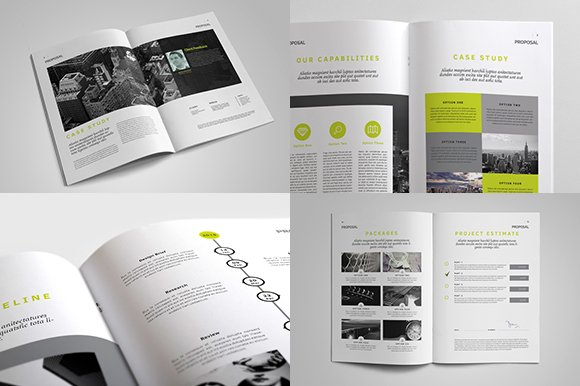 Indesign business proposal template brochure templates creative indesign business proposal template brochure templates creative market cheaphphosting Choice Image