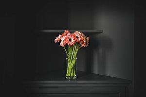 Flowers in Vase at Black Background