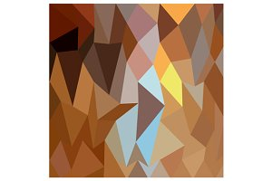 Dark Tangerine Abstract Low Polygon