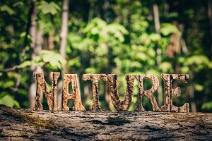 NATURE writing made from wooden lett