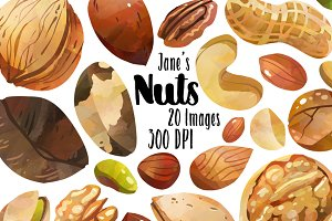 Watercolor Nuts Clipart
