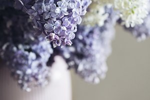 a bouquet of lilac in a vase
