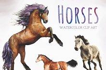 Watercolor Horses Clip Art