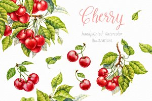 Cherry. Watercolor collection