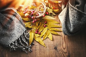 Cup of autumn tea and scarf