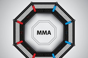 MMA octagon cage