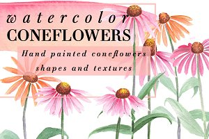 Watercolor Coneflowers Kit