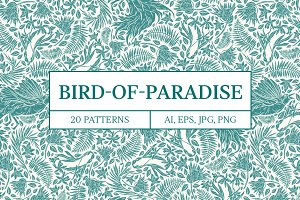 Bird-of-Paradise patterns -45% OFF