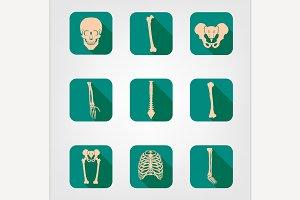 Human Bones Icons