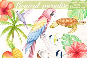 Tropical clipart