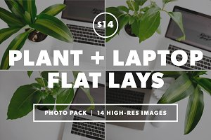Desk + Plant Flat Lay Bundle