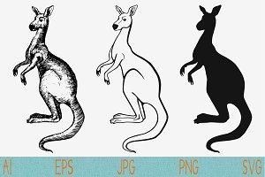 kangaroo set vector svg png eps