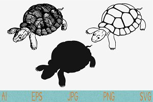 turtle set vector svg png eps