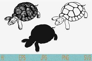turtle set vector svg png eps