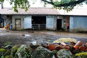 Farm in Spain