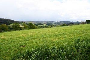 Fields in Spain