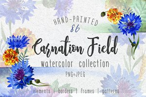 Carnation field PNG watercolor set