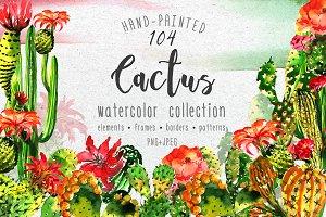 Aquarelle green cactus PNG set