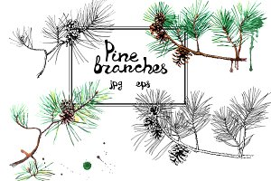 Hand-drawn pine branches