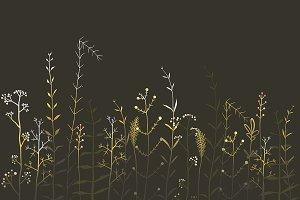 Wild Field Flowers and Grass on Dark