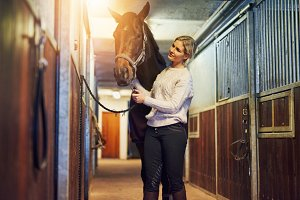 Smiling woman preparing her horse in stables before a ride