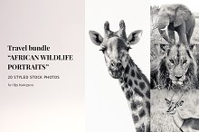 "Travel Bundle ""African Wildlife"""