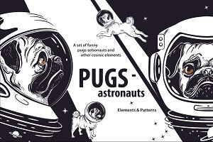 Funny pugs astronauts