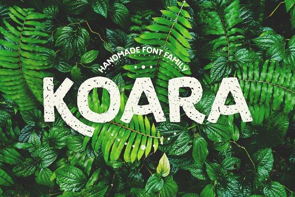Script Fonts: Rosario Nocera - Koara / handmade font family