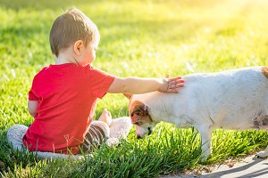 Boy In Grass Petting His Dog